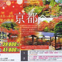 秋は真っ赤な紅葉の世界 京都
