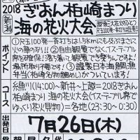 2018ぎおん柏崎まつり 海の花火大会