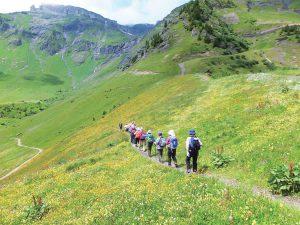 花の谷ハイキング