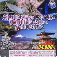 身延山久遠寺のしだれ桜と新倉山浅間公園より富士山を望む