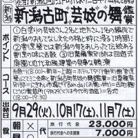 新潟古町芸妓の舞鑑賞