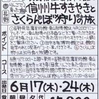長野県信濃美術館と信州牛すきやきとさくらんぼ狩りの旅